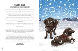Psy v akcii: Neuveriteľné, ale pravdivé psie príbehy z celého sveta