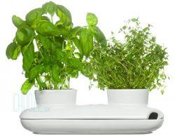 Kvetináč Duo herb