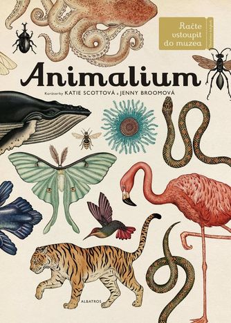 Animalium CZ