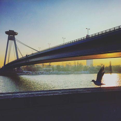 Pohľadnica Most SNP