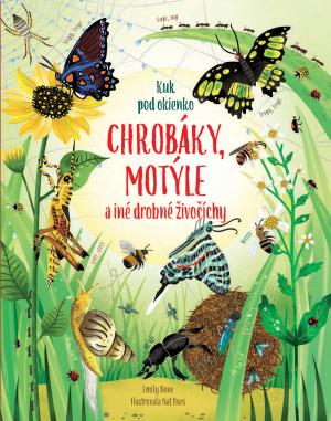 Kuk pod okienko: Chrobáky a motýle